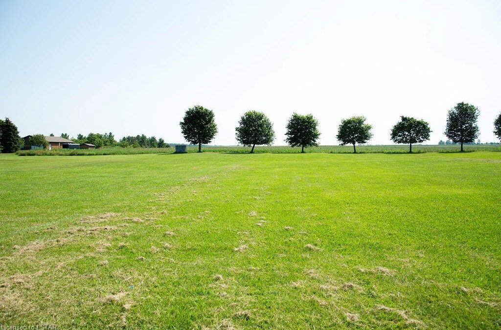 Just listed! Vacant lot in Watford area! $124,900